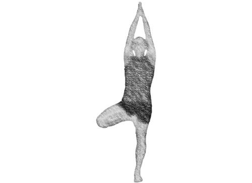 cwiczenia_jogi_vrksasana_drzewo