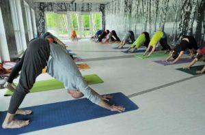 czerwcówka z jogą